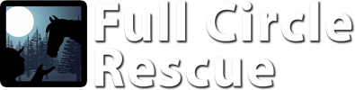 Full Circle Rescue | Equine Rehabilitation Center
